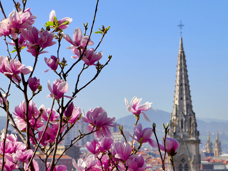 Bilbao.eus 316560dffd5